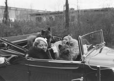 Two women and their dogs in a car, taken by Zoltan Glass, c. 1933.