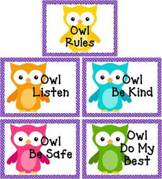 Owl Classroom Rules with Polka Dots