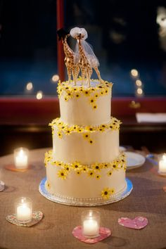 sun flowers, buttercream, daisy, stacked wedding cake, giraffe