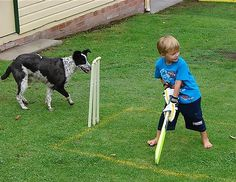 Barney keeps wicket.  IS THERE anything that says ''summer'' more than backyard cricket - the informal, ad hoc variant of the game beloved by the entire nation.