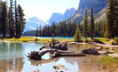 Góry, Jezioro, Las, Park Narodowy, Kanada