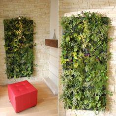 Résultats Google Recherche dimages correspondant à http://www.journaldesfemmes.com/jardin/plante-interieur/tutoriel-pratique/mur-vegetal-d-interieur-pas-a-pas/image/preparation-396175.jpg