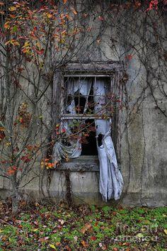 ghostly window