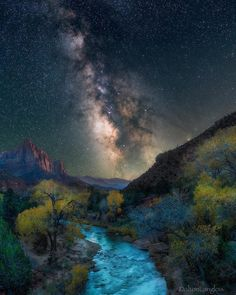 Zion's valleys are in peak right now. These western cottonwoods you see in the photo turn a beautifu. Beautiful World, Beautiful Images, Look At The Stars, Color Photography, Stunning Photography, Deep Space, Nature Images, Dark Night, Stars