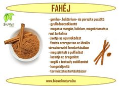 A fahéj és jótékony hatásai Healthy Drinks, Healthy Tips, Healthy Recipes, Health And Nutrition, Health Fitness, Health Eating, Natural Treatments, Eating Habits, Natural Health