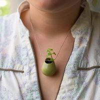 Got one!  YEAH!  @Emily Toledo   A Wearable Planter
