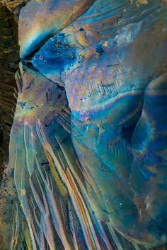 Janet Little Jeffers. Takes rust to a new art form Journal D'art, Foto Nature, Art Grunge, Foto Macro, Grafik Art, Nature Artwork, Abstract Photography, Belle Photo, Textures Patterns