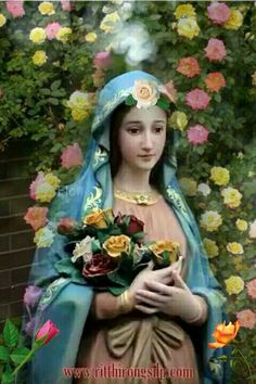 Mary Jesus Mother, Blessed Mother Mary, Mary And Jesus, Blessed Virgin Mary, Mama Mary, Mary I, Holy Mary, Hail Holy Queen, La Salette