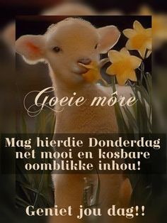 Lekker Dag, Afrikaanse Quotes, Goeie More, Day Wishes, Morning Quotes, Motivation, Words, Thursday, Fat