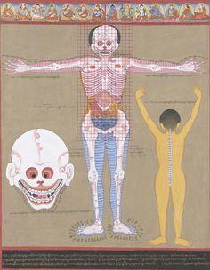 Art of Healing: Illustrations Reveal Old Tibetan Medicine | LiveScience