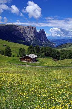 sublim-ature: Alpe di Siusi, ItalyStefano Landenna