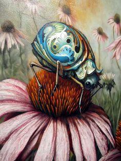 Echinacea by esao andrews