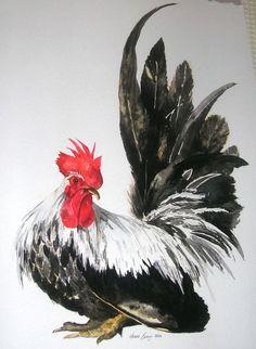 Cockerel watercolour: