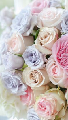 Bouquet of pastel roses Pastel Flowers, My Flower, Pretty Flowers, Pastel Colors, Colorful Roses, Pastel Bouquet, Rose Bouquet, Soft Pastels, Pastel Floral
