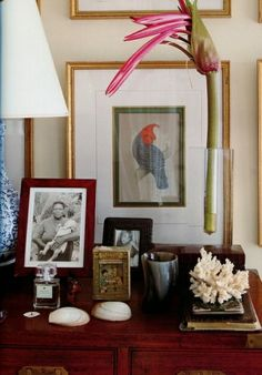 images about india hicks island life on Pinterest