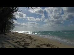 Bahamas 14 islands envoy film of Bimini by Jan Bednarz - YouTube