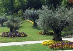 Creare una bella aiuola sotto l'albero! 20 esempi bellissimi + VIDEO Creare una bella aiuola. Oggi abbiamo selezionato per Voi 20 idee creative per decorare il giardino creando una bellissima aiuola sotto un albero. Date un'occhiata a queste splendide... Outdoor, Garden Trees, Garden Decor, Garden Gazebo, Country Gardening, Garden Design, Garden Landscaping, Garden, Exterior
