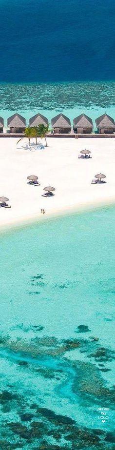 Constance Moofushi #Maldives | LOLO❤️︎ ##shimonfly