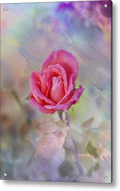 Pink Gentility Acrylic Print By Bill Tiepelman