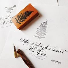 Practice, Calligraphy fonts / Pratica, Calligrafia dai diversi caratteri