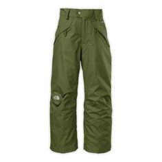The North Face Boys' 2014 Seymore Insulated Winter Pants