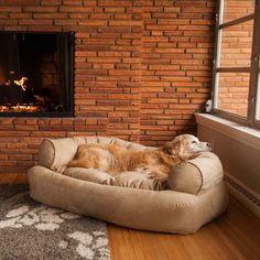 Overstuffed Luxury Pet Sofa LARGE - 16 colors