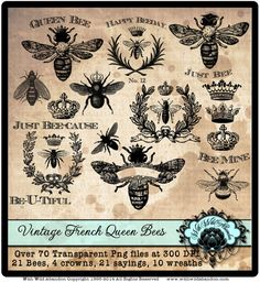 Abeja Clipart, Queen Bee Clipart , Vintage French Wreath Clipart, Ilustraciones Corona . Dichos abeja. Sello Digital o superposiciones