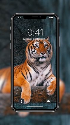 Amazing Live Wallpapers Liven up your s Iphone Wallpaper Video, Wallpaper Maker, Lock Screen Wallpaper Iphone, Wallpaper Iphone Disney, Locked Wallpaper, Mobile Wallpaper, Tiger Wallpaper, Black Phone Wallpaper, Unique Wallpaper