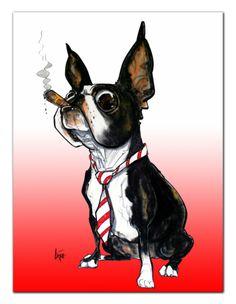 Bossy Boston Terrier