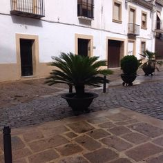 The cast iron pots, the paving - Baeza