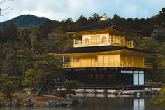 Buddhist Temple, Cherry Blossom Season, Bamboo Tree, Famous Places, Great View, Kyoto, Explore