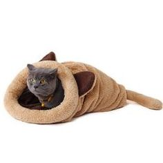 Cheap pet dog house, Buy Quality dog house directly from China cat mat Suppliers: Cute Cat Sleeping Bag Warm Dog Cat Bed Pet Dog House Lovely Soft Pet Cat Mat Cushion High Quality Products Lovely Design Pet Beds, Dog Bed, Cute Cat Sleeping, Sleeping Bags, Cat Mat, Cat Supplies, Pet Shop, Cute Cats, Funny Cats