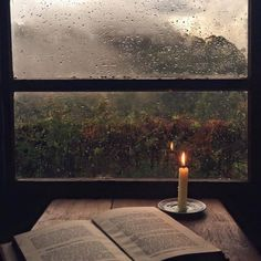 Cozy fall with rain and a good book to read by candlelight with a view to stare at in between chapters ♡ ~ Ty Michelle Faust Goethe, Haunted Tree, Jolie Photo, Rainy Days, Cozy Rainy Day, Rainy Mood, Autumn Leaves, Autumn Rain, Autumn Cozy