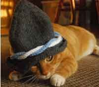 Ein Prosit Germany Cat Hat