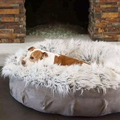 Animals Matter® Faux Fur Shag Puff is the Ultimate in Luxury and Designer Dog Beds