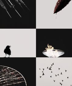 divergent... but doesn't that bowl look like the bowl full of nightlock at the end of Hunger Games?