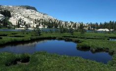 Lower Cathedral Lake near Yosemite National Park's Tuolumne Meadows is a great place for a novice hiker to challenge oneself: It's a 7-mile hike with a 1,000-foot climb.
