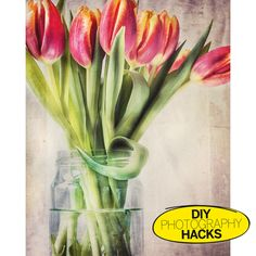 ​Add impact to still lifes using baking sheets for backgrounds
