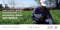 La implementación de las buenas prácticas agrícolas contribuyen a un desarrollo rural sostenible. SAGARPA SAGARPAMX #MéxicoAgroPotencia