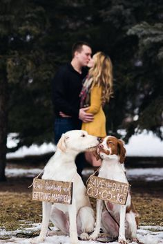 Pet SaVe THe DaTe SiGn  Dog PHoTo PRoP SiGn  by lizzieandcompany