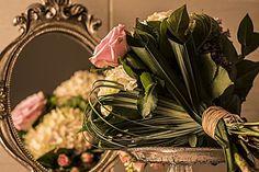 elegance which concerns itself by claudia dabo Elegant, Plants, Dapper Gentleman, Plant, Classy, Planting, Planets