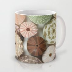 Sea Urchin Cup Ocean Decor Natural History by machelspencePHOTO, $20.00