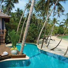 The best kind of paradise 🌴 (📷: @hotelsandresorts)