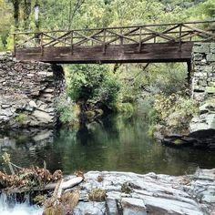 Río en los Ancares