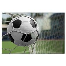 Soccer ball in goal Poster