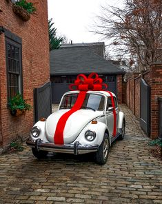Classy Girls Wear Pearls: A Very Buggy Christmas Beetle Bug, Vw Beetles, My Dream Car, Dream Cars, Wolkswagen Van, Vw Cabrio, Vw Vintage, Gift Guide For Him, Classy Girl