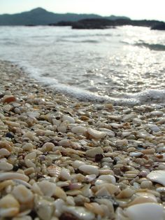Playa Conchal (Shell Beach), Costa Rica. Yes, that's right... a beach made entirely of tiny shells.
