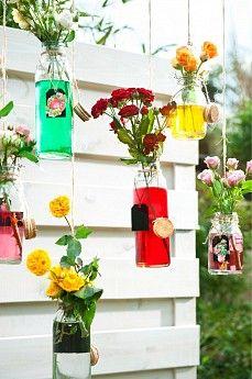 Alles over rozen bij Intratuin