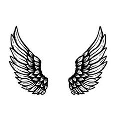 Photo Background Images Hd, Doodle Background, Background Design Vector, Cartoon Angel Wings, Angel Wings Drawing, Angel Sketch, Wings Sketch, Eagle Wing Tattoos, Tattoo