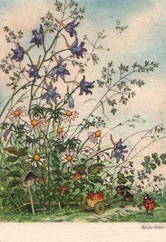 Ilustraciones antiguas de Margaret Tempest. - Taringa!